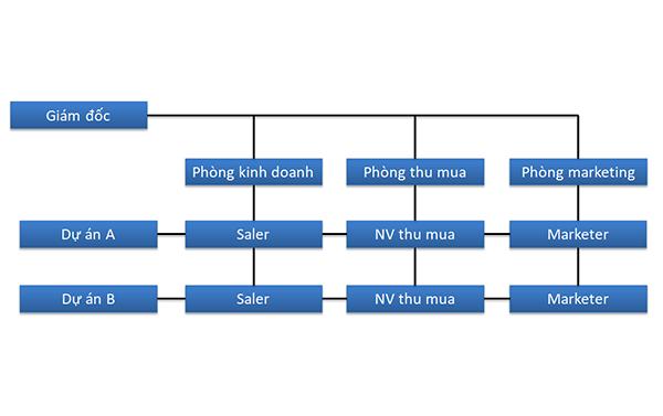 Mô hình quản lý ma trận