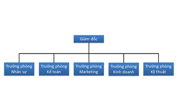 Mô hình quản lý theo chức năng